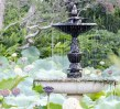 Fountain in the Royal Botanic Gardens, Sydney