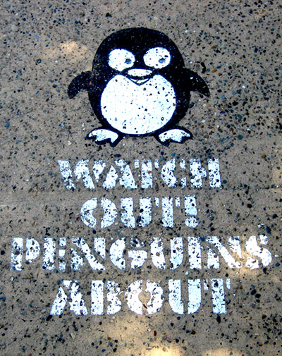37-penguins-about